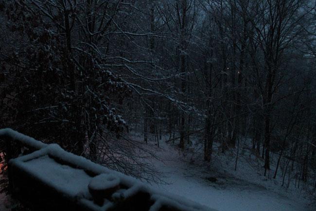 [Photo from Lake Ridge, Va. -- March 6, 2013]