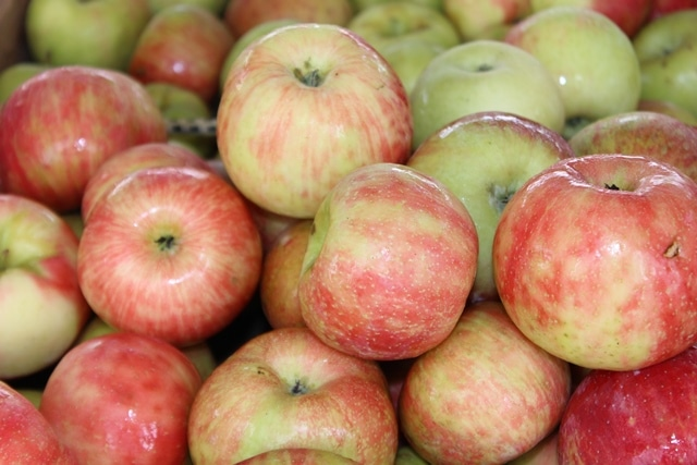 If you've never had a Honeycrisp apple, you're missing out! They're incredibly crisp and fresh and delicious. These apples make a delicious snack.