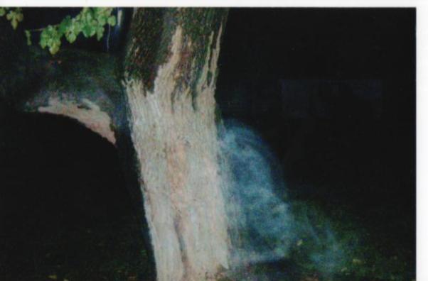 Ghost Tour Manassas